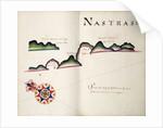 Nastras, South American Pacific coast by William Hack