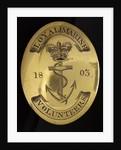 Irish Volunteer Corps by unknown
