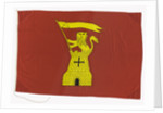 House flag, Tyne-Tees Steam Ship Co. Ltd by unknown