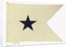 House flag, Bristol City Line of Steamships Ltd by unknown
