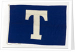 House flag, Tavistock Shipping Co. by unknown