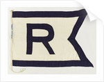House flag, Walter Runciman & Co. by unknown