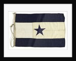 House flag, Asiatic Steam Navigation Co. Ltd by unknown
