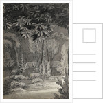 A view through trees towards a single-storey building (verso) by Thomas Baxter