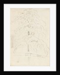 A study of a tree over water (verso) by Thomas Baxter