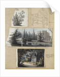 A study of a shrub and and chair, views of Merton Place by Thomas Baxter