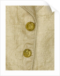 Waistcoat - button detail, Honourable East India Company uniform: pattern 1830 by unknown