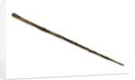 Walking stick by unknown