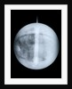 Globe x-ray by Benjamin Martin