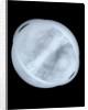 Globe x-ray by Willem Jansz Blaeu