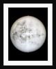Globe x-ray by Hyacinthe Langlois
