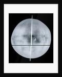 Globe x-ray by Gemma Frisius