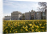 Exterior of the National Maritime Museum, Greenwich in spring 2007 by National Maritime Museum Photo Studio