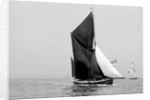 'Lord Nelson' (Br, 1898) sailing barge under sail by unknown