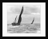 Sailing barge 'Genesta' (Br, 1903) under sail by Anonymous