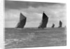The Spritsail Barge Race, 1903 by Anonymous