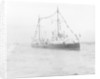 HMS 'Gossamer' (1860) on 28 June 1897 by unknown