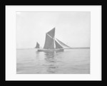 Sailing barge 'Sara' (Br, 1902) under sail by unknown