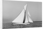 A yacht under sail by Anonymous