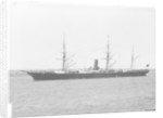 'Lusitania' (Br, 1871) by unknown