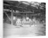Plate-bending machine at John Brown & Co. Ltd, Clydebank, 1901 by Bedford Lemere & Co.