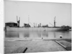 The 'Empire Archer' (Br, 1942) lying in the Alexandra Dock, Hull by unknown