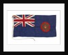 Ensign of the Director of the Nigeria Marine by Porter Bros