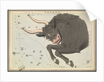Taurus, Urania's Mirror or a View of the Heavens by Sidney Hall
