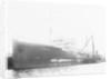 'Plumleaf' (Br, 1916) by unknown