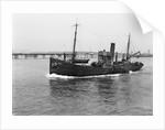 HMS 'Eddy' (1918) by unknown