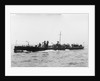 A port bow view of TB 81 (1885) by unknown