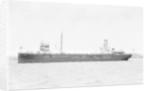 'Birchol' (Br, 1917) by unknown