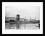 'Blairdevon' (Br, 1925) under coal hoist 4 in Kings Dock, Swansea by unknown