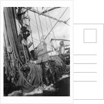 Horrified sailors watch a shipmate above as some gear parts high aloft by Alan Villiers