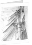 On board the 'Parma': looking aloft on the Mizzen, the interlacing stays supporting the mast by Alan Villiers