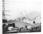 RMS 'Scott' at anchor in Cape Town, South Africa by unknown