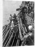 Unloading mangrove poles from the 'Triumph of Righteousness' by Alan Villiers