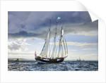 Topsail schooner 'Oosterschelde' during Hartlepool Parade of Sail 2010 by Richard Sibley