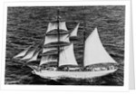 'Massimo Padre' (Br, 1905), under sail off Malta by unknown