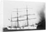 'Sarvsfos' (Br, 1892) at Savannah by unknown