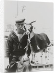 Goat mascot on board the HMS 'Irresistible' (1898) in Malta by unknown