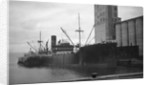 General cargo ship 'Sinnington Court' (Br, 1928) at quayside by unknown
