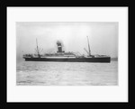 Passenger liner 'Victorian' (Br, 1904) under tow, Allan Line S S Co Ltd by unknown