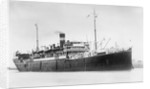 Passenger/cargo liner 'Torilla' (Br, 1911), British India Steam Nav Co Ltd, under way by unknown