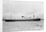 The 'Waimarama' (Br, 1938) by unknown