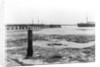 A view looking from the shore towards Shotley pier at low tide by Smiths Suitall Ltd.