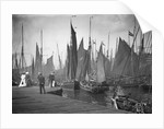 A view from the wooden quay at Lowestoft, Suffolk, looking across the trawl basin filled with a large number of sailing trawlers by Smiths Suitall Ltd.