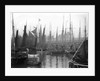 A view of trawlers in the basin at Lowestoft by Smiths Suitall Ltd.