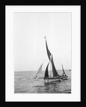 'Sara' (Br, 1902) under sail during Thames barge race by unknown