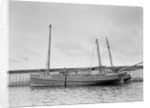 'Mary and Emily' (Br, 1922), at quayside, Newlyn by unknown